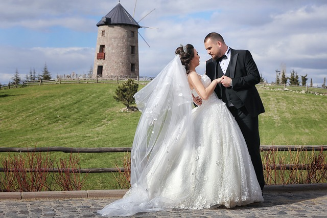 Bridal Son In Law Marriage Wedding  - OlcayErtem / Pixabay